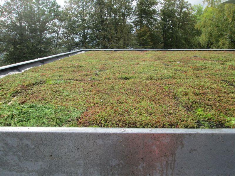 La toiture est végétalisée avec le système Xeroflor®