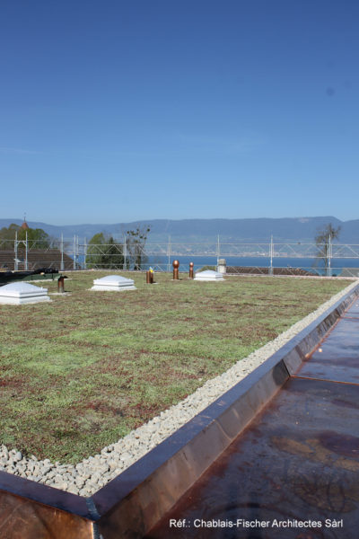 Dachbegrünung Estavayer-le-Lac 2017