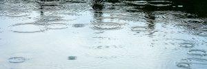 Infiltration des eaux de pluie