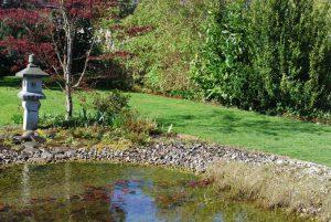 Le miracle a eu lieu: la terre est recouverte d'un magnifique tapis vert!