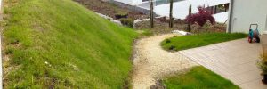 FlexiMur s'intègre après la végétalisation parfaitement dans le paysage