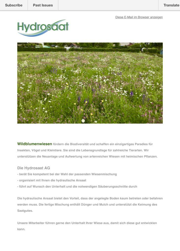 Wildbumenwiesen - Biodiversität