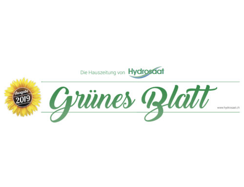 … and the winner is – Gewinnspiel Grünes Blatt 2019