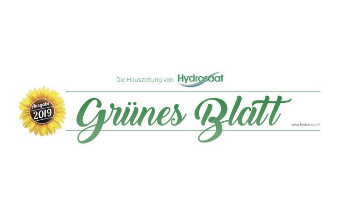 Grünes Blatt 2019