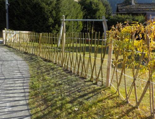 Verbier : clôture en saule vivant